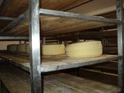 Fabrica de branzeturi Agios Leon
