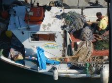 Pescari in portul Paralia Katerini