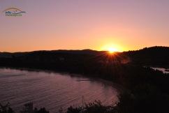 Apus superb in Skiathos