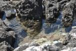 Mini salina - Porto Roxa