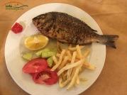 """Dorada este unul dintre cele mai gustoase specii de pesti. Dorada la gratar cu garnitura de cartofi prajiti/la cuptor/nature si un pic de salata greceasca sau Tzatziki este o adevarata incantare. In Grecia se face """"cura de peste si fructe de mare""""! :)"""