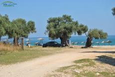 Plaja Livadi Thassos - locul de parcare