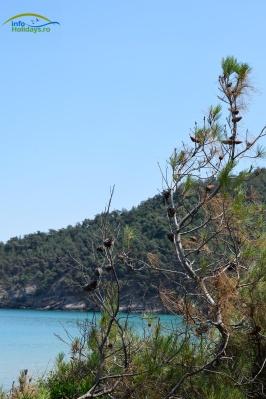 Plaja Paradise Thassos
