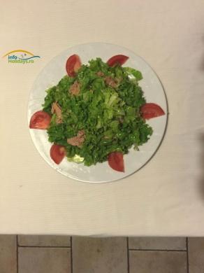 Pentru cei care doresc o gustare usoara, racoritoare, In Grecia se poate comanda Salata de Ton. Salata verde, ceapa, ton, condimente si ulei de masline. Usor si dietetic! :)