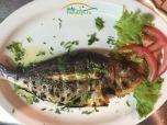 """La noi este cunoscut mai mult sub denumirea de Dorada. Tsipoura este un peste cu carne """"dulce"""" aromata, alba ce merge foarte bine cu Dzadziki( Tzatziki). De obicei se serveste in combinatie cu garnitura de cartofi prajiti sau cartofi la cuptor. Gustul este desavarsit prin daugarea unui strop de lamaie proaspata!"""