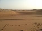 Spectaculosul peisaj din desert