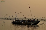 India - Varanassi - plimbare cu barca pe Gange