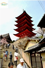 Japonia - Circuit -Five story pagoda, Hokoku Shrine -Miyajima