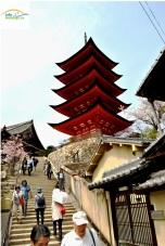 Japonia - Circuit -Five story pagoda, Hokoku Shrine -Miyajima