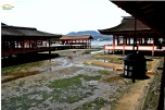 Japonia - Circuit -Itsukushima Shrine