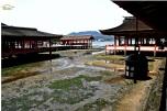 Japonia - Circuit -Itsukushima Shrine