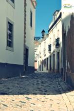 Picture 014_Faro