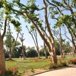 Topkapi garden