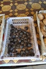 Bintan local fruits